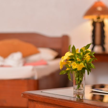 Enjoy a truly relaxing ambience in our Queen Room - Hibiscus Garden Inn